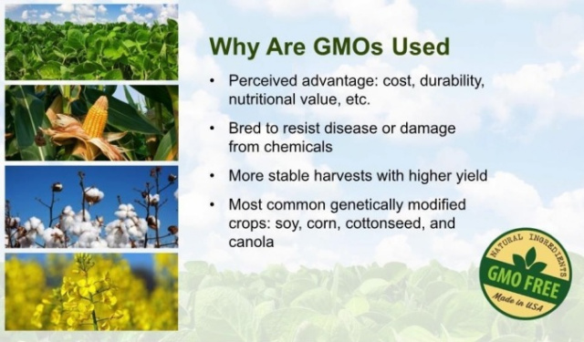 Why Are GMO's Used?