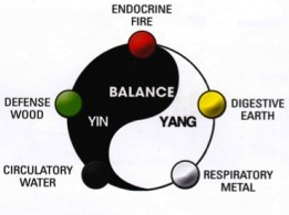 Yin Yang Symbol and 5 Elements