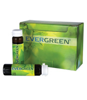 Evergreen/Liquid Chlorophyll/10 pack/.5 fl oz vials